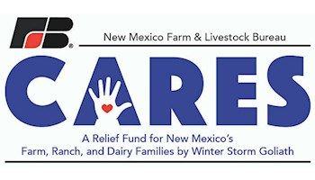 NMF&LB establishes Cares Relief Fund for those affected by Winter Storm Goliath